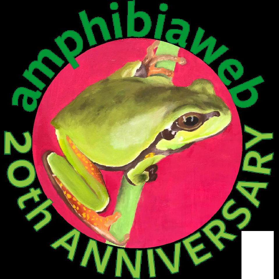 Art Your Amphibian