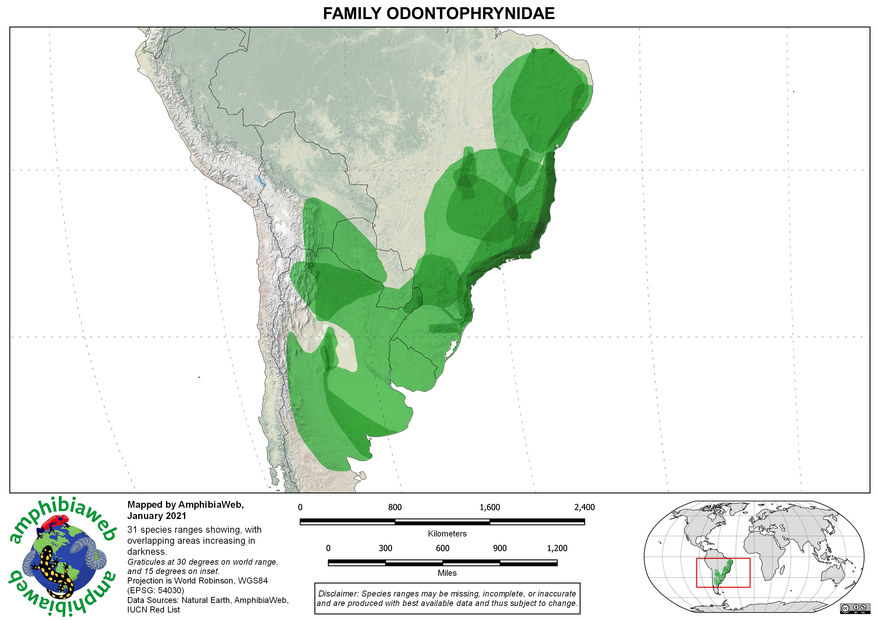 Odontophrynidae Richness map