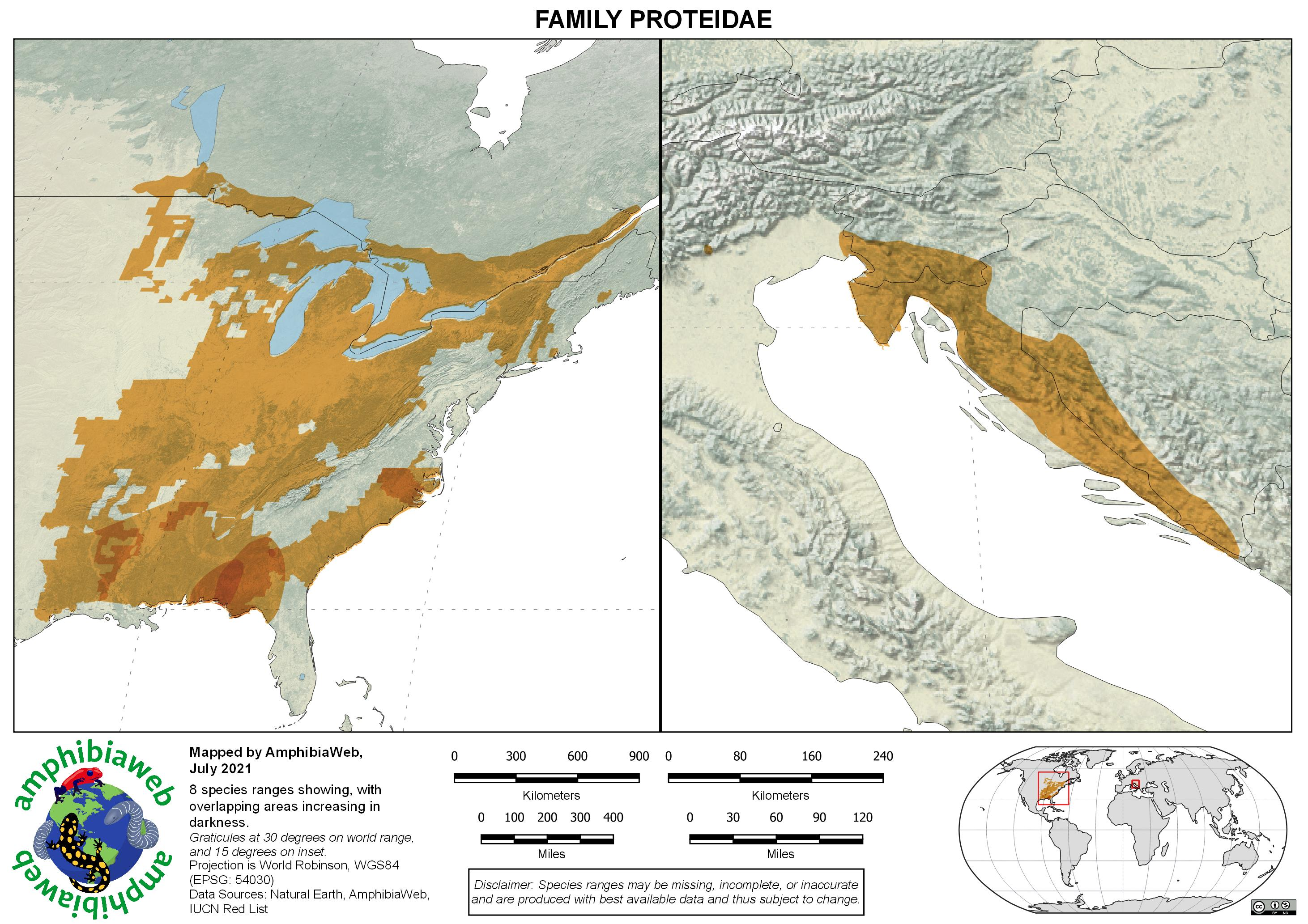 Proteidae Richness map