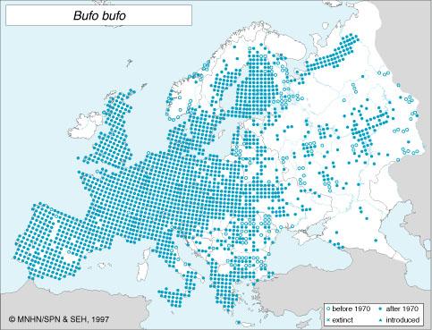 distribución Bufo bufo