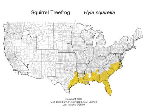Distribución H.squirella