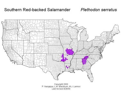 AmphibiaWeb Plethodon Serratus - Us amphibian distribution maps