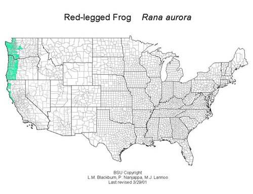 AmphibiaWeb Rana Aurora - Us amphibian distribution maps